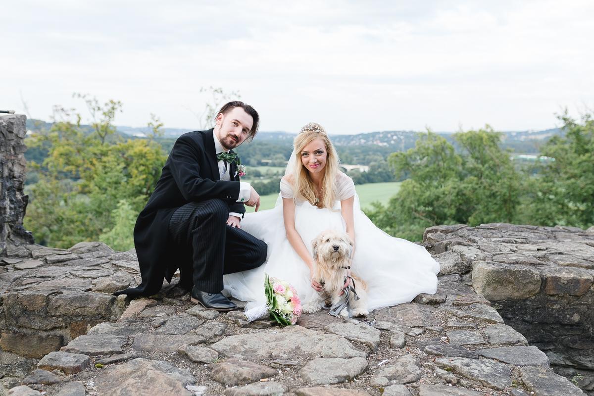 Hochzeitstag Hund